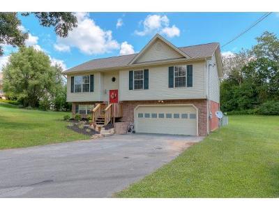 Jonesborough Single Family Home For Sale: 283 Emma Grace Drive
