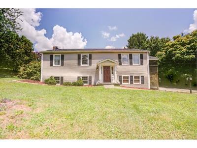 Jonesborough Single Family Home For Sale: 285 Overhill Drive