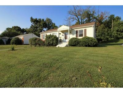 Bristol Single Family Home For Sale: 113 Neal Drive