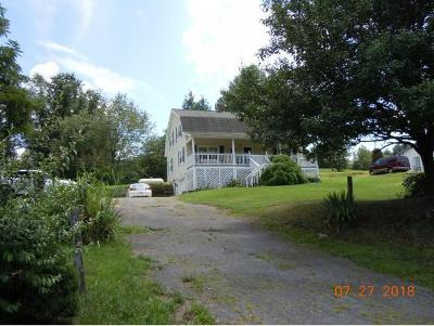 Abingdon Single Family Home For Sale: 26512 Lee Hwy