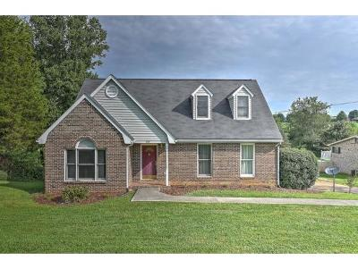 Johnson City Single Family Home For Sale: 193 South Pickens Bridge Rd.