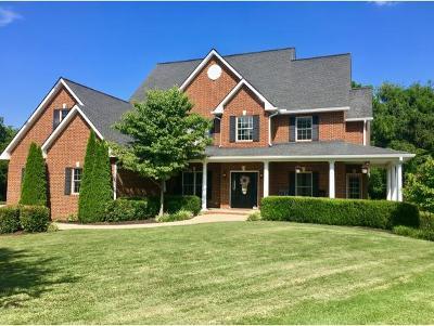 Greeneville Single Family Home For Sale: 210 Easy Street