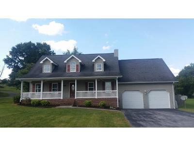 Blountville Single Family Home For Sale: 126 Sanders St