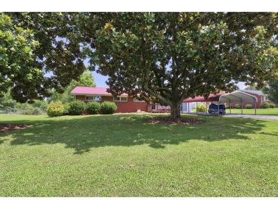Gray Single Family Home For Sale: 144 Copas Drive