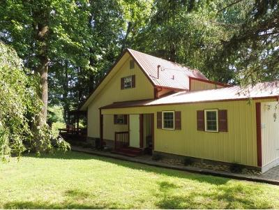 Piney Flats Single Family Home For Sale: 887 Lake Point Drive