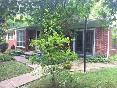 Greeneville Single Family Home For Sale: 209 Kenwood Drive