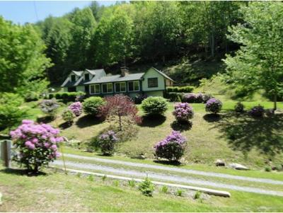 Roan Mountain Single Family Home For Sale: 200 Old Buck Mountain R.