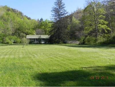 Rogersville Single Family Home For Sale: 217 Elbow City