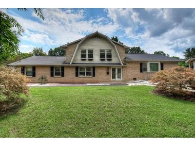 Johnson City Single Family Home For Sale: 1802 Broadmoor Rd
