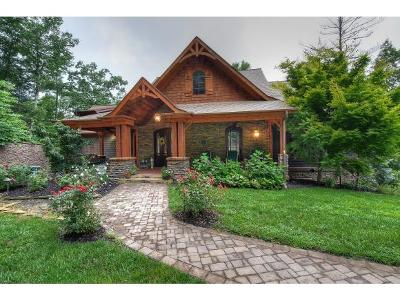 Greeneville, Greenville, Greneville, Blountvile, Blountville, Bristol, Church Hill, Johnson City, Kingport, Kingpsort, Kingsoprt, Kingspoet, Kingsport, Rogersville, Erwin, Gray, Jonesboro Single Family Home For Sale: 684 Nordic Pvt Dr