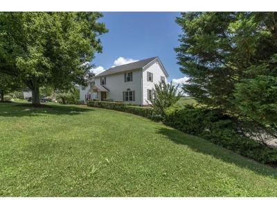 Damascus, Bristol, Bristol Va City Single Family Home For Sale: 20363 Golden View Drive
