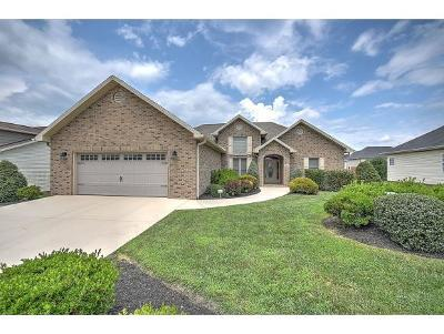 Jonesborough Single Family Home For Sale: 149 Thistledown Cir