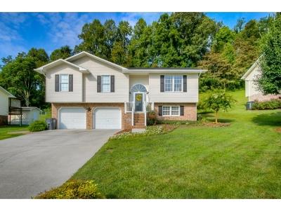 Mount Carmel Single Family Home For Sale: 208 Grandview St