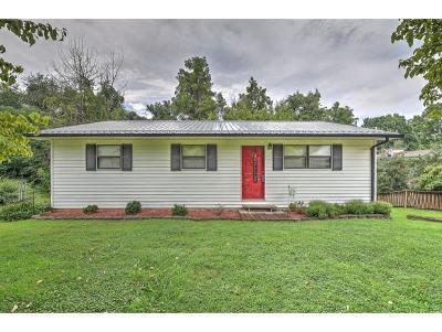 Jonesborough Single Family Home For Sale: 107 John Sevier Ave