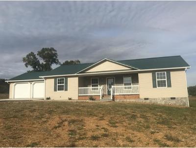 Greeneville Single Family Home For Sale: 130 N. Massengill Rd