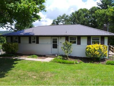 Blountville Single Family Home For Sale: 462 Knobview Road