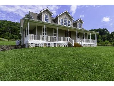 Abingdon Single Family Home For Sale: 16341 Brumley Gap Road