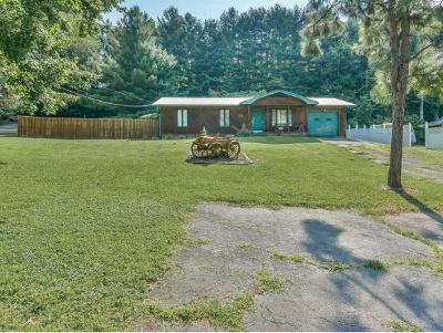 Bristol Single Family Home For Sale: 2071 Hwy 421