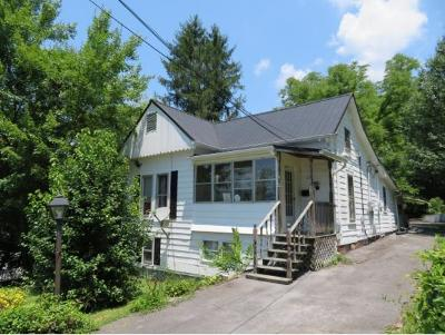 Erwin Multi Family Home For Sale: 317 Pine St