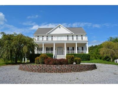 Piney Flats Single Family Home For Sale: 395 Deerlick Road