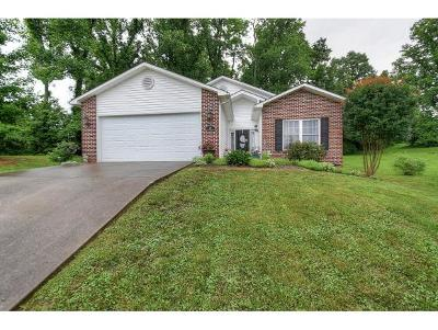 Johnson City TN Single Family Home For Sale: $179,900
