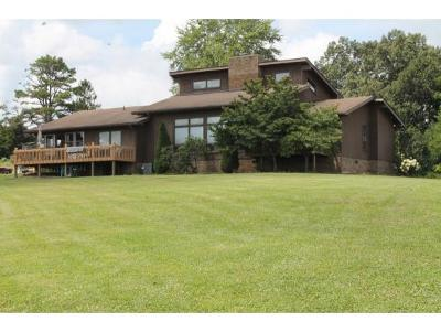 Greeneville Single Family Home For Sale: 4485 West Allens Bridge Rd