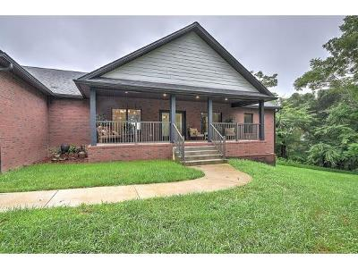 Johnson City Single Family Home For Sale: 1199 Cliffview Circle