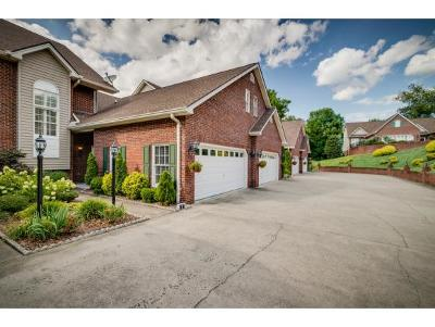 Kingsport Condo/Townhouse For Sale: 103 Hampton Green #3