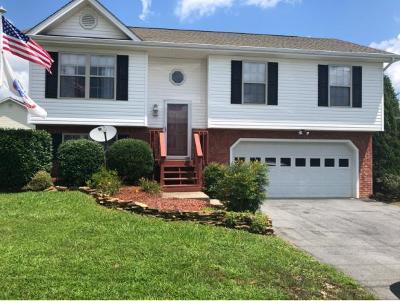 Jonesborough Single Family Home For Sale: 208 New Hope Rd