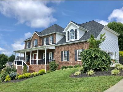 Blountville TN Single Family Home For Sale: $378,850