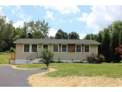 Bluff City Single Family Home For Sale: 1218 White Top Rd.