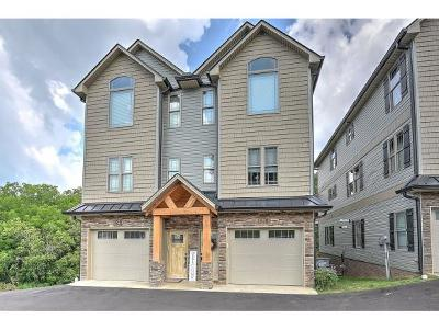 Kingsport Condo/Townhouse For Sale: 380 Rock Springs Rd #1
