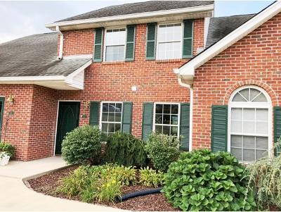 Blountville Condo/Townhouse For Sale: 114 Eagle View Pvt Dr #114