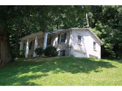Johnson City Single Family Home For Sale: 407 Rovan Drive