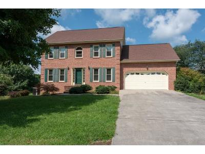 Kingsport TN Single Family Home For Sale: $293,000