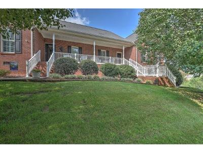Kingsport TN Condo/Townhouse For Sale: $260,000