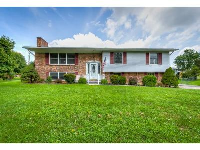 Kingsport TN Single Family Home For Sale: $189,000
