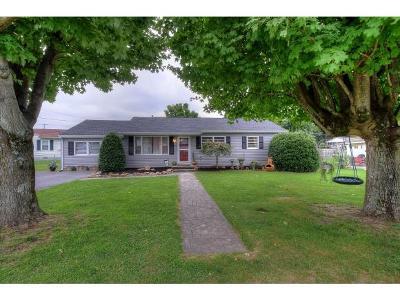 Elizabethton TN Single Family Home For Sale: $124,500