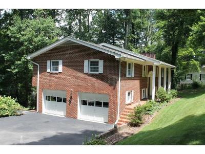 Damascus, Bristol, Bristol Va City Single Family Home For Sale: 15327 Monticello Drive