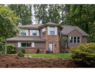 Bristol VA Single Family Home For Sale: $234,900