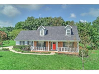 Gray Single Family Home For Sale: 216 Wiltshire Drive