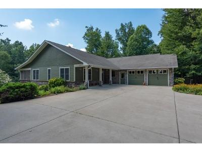 Jonesborough Single Family Home For Sale: 147 Creasey Creek Rd