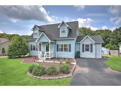 Gray Single Family Home For Sale: 1077 Gray Station Rd