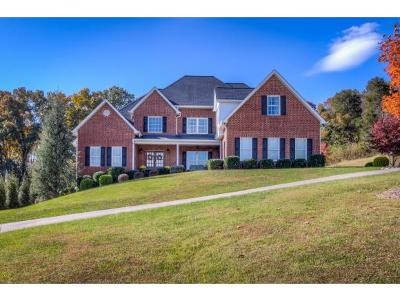 Kingsport Single Family Home For Sale: 120 Summerville Farms Court