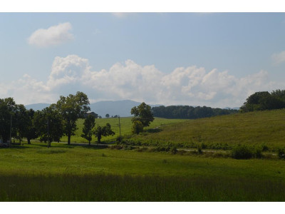 Greene County Residential Lots & Land For Sale: West Allens Bridge Rd.