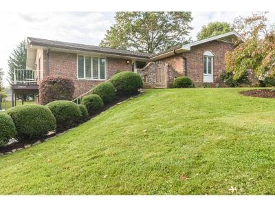 Abingdon Single Family Home For Sale: 20010 McCray Dr