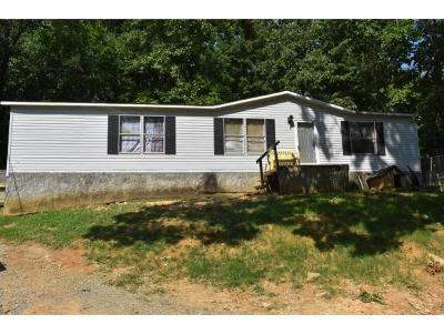 Elizabethton Single Family Home For Sale: 207 Old Charity Hill Road