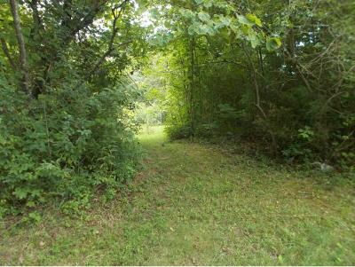 Johnson City Residential Lots & Land For Sale: 452 Oak Grove Rd