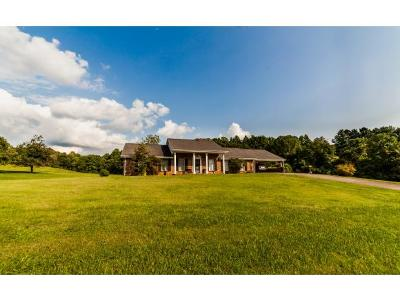 Blountville Single Family Home For Sale: 410 Overhill Dr