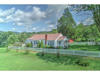 Rogersville Single Family Home For Sale: 5201 Hwy 66n